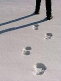 Canada snow footprints