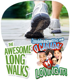 Awesome Walking